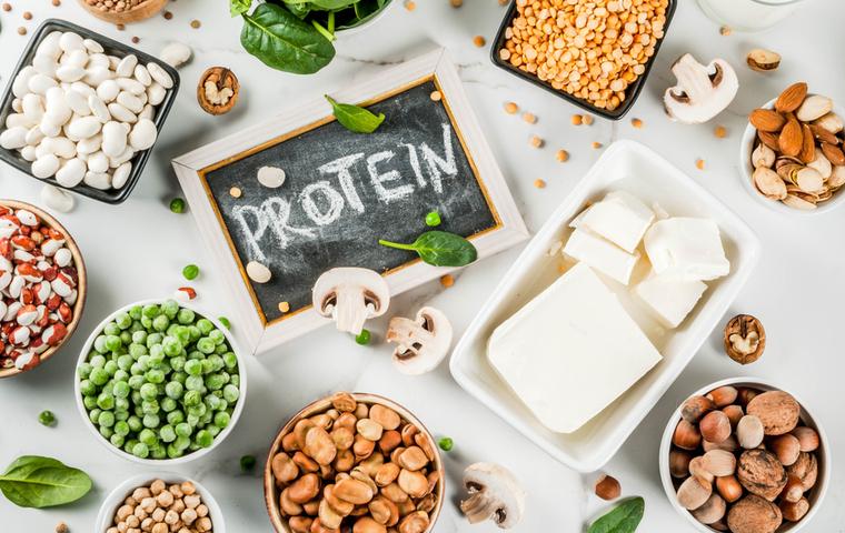 植物性のタンパク質
